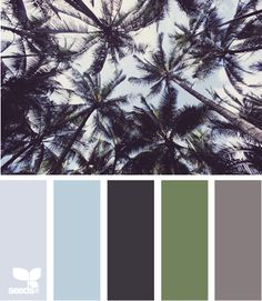 palm tones-colors to finish the living room with since the walls are the same color green