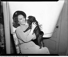 Actress Gloria Swanson posing with an adorable pug, c.1939-45.