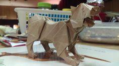 Gen Hagiwara's Puma by Nick LaFleur