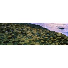Giants Causeway Co Antrim Ireland Area Designated A Unesco World Heritage Site With Basalt Columns Canvas Art - The Irish Image Collection Design Pics (34 x 11)
