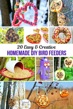 Homemade Bird Feeders, Bird Feeders for Kids, These Homemade Bird Feeders and birdseed ornaments are easy to make and they look so nice hanging on the trees. Your kids will love making Apple Bird Feeders, Pine Cone bird feeder and Bird Seed Ornaments Bird Crafts, Fun Crafts, Diy And Crafts, Crafts For Kids, Shell Crafts, Nature Crafts, Kids Diy, Bird Feeder Craft, Pine Cone Bird Feeder