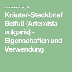 Kräuter-Steckbrief Beifuß (Artemisia vulgaris) - Eigenschaften und Verwendung