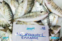 Γευστικότατες Μουρμούρες για σήμερα !! ☎️Delivery: 231 023 2228  #PsarasIxthiopolion #Ψάρια #Thessaloniki