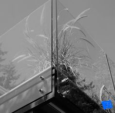 Learn the advantages of different types of window glass that are available before you order your windows Wired Glass, Clear Glass, Types Of Window Glass, Glass Balcony, Window Glazing, Mirror House, Laminated Glass, Translucent Glass, Plastic Glass
