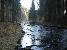 Kamenný Malíkov – Wikipedie River, Outdoor, Outdoors, Outdoor Games, The Great Outdoors, Rivers