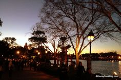 """News!! Epcot Introduces """"After Hours Wind Down!"""" Booking Open Now! #DisneyNews #WDW #Disney"""