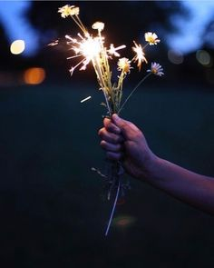 This is a cute example of night photography. This image is focused on the bunch of flowers lighting up. The main props used for this particular image is a bunch of flowers and sparklers. Bonfire Night, Photos Du, Belle Photo, Pretty Pictures, Art Photography, Fireworks Photography, Inspiration, Beauty, Instagram