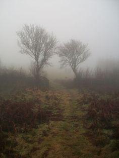 English Moors (The Hempstock Farm)