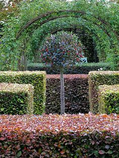 Hilborough House, Norfolk - The  garden, originally designed by Arne Maynard, is contemporary with extensive use of hedges and topiary.  One of the major modern gardens of England.