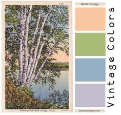 Ponyboy Press - zine maker, design lover, dedicated homebody: Vintage Color Palette - Greetings from North Chicago Vintage Color Schemes, Vintage Colour Palette, Blue Palette, Pastel Palette, Colour Pallette, Vintage Colors, Color Combos, House Of Tomorrow, Charleston Gardens