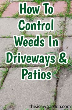 Learn how to safely and effectively control weeds growing in driveways, walkways and patio areas. Take control of your landscape this year! Garden Yard Ideas, Lawn And Garden, Garden Seat, Garden Fun, Backyard Ideas, How To Kill Grass, Weed Killer Homemade, Garden Weeds, Yard Care