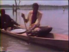 Lindane Pesticide Use in Ghana West Africa 1982 - fish kills