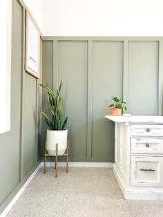 DIY Office Spaces: Tips for DIY Desk Ideas, Organization, and Office Decor to Inspire You to Work Sage Green Bedroom, Sage Green Walls, Living Room Green, Green Rooms, Living Room Decor, Bedroom Decor, Green Bedroom Colors, Green Bedroom Paint, Sage Green Paint