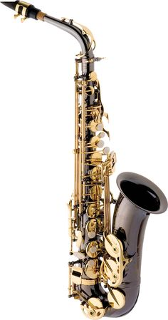 Want I love to play Alto Saxophone