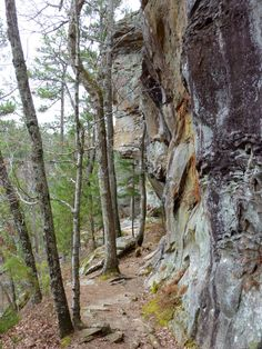 4. Cedar Bluff State Park (Ellis) Kansas Hikes - This 5-mile, multi-purpose trail is a feast for the senses with the sights of copper-colored rocks, sounds of singing native birds and the sweet smells of fresh air.