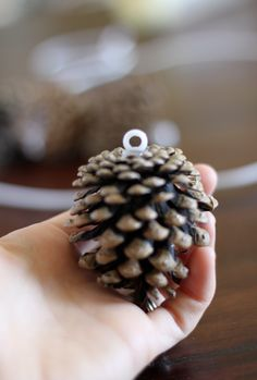 Hot glue pony beads to pine cones so you can wire them on wreaths and garland. Use a dark color though not white. From do it yourself divas: DIY: Pinecone Wreath (Practically FREE) Holiday Crafts, Christmas Wreaths, Christmas Bulbs, Christmas Crafts, Christmas Decorations, Xmas, Pinecone Garland, Diy Garland, Diy Wreath