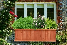 Growing winter vegetables in a window box - There is nothing like growing vegetables on the balcony, but it is difficult. Above Ground Sprinkler System, Decorative Rain Barrels, Herb Garden Design, Garden Ideas, Growing Winter Vegetables, Vegetable Boxes, Sprinkler Irrigation, Potager Garden