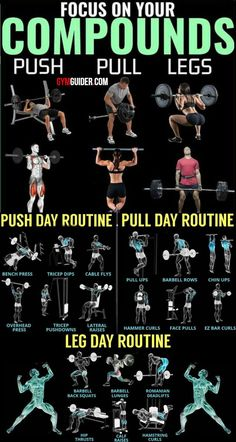 Build Muscle And Blast Fat With The Push/Pull Workout Plan - GymGuider.com