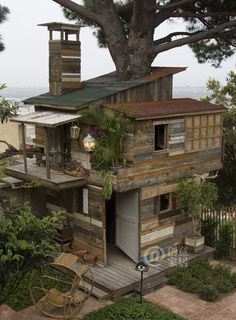real tree house!