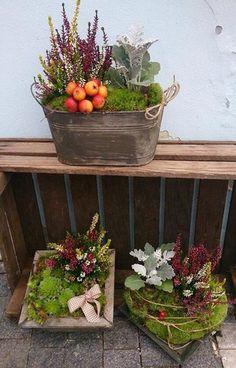 Herbst Dekoration Pflanzkübel