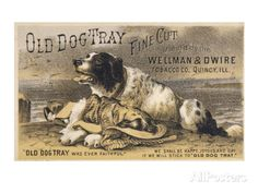 Old Dog Tray Was Ever Faithful (Newfoundland) Giclee Print