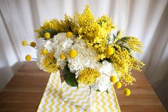 craspedia/billy buttons/billy balls, protea, hydrangea and acacia