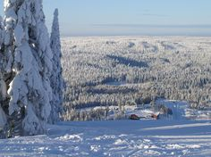 Paljakka in Puolanka, my mom's home village in the very north of Finland.