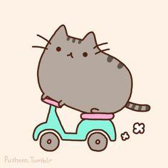 Pusheen the cat