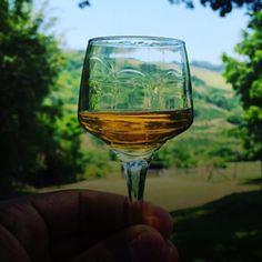 Brasil e México fecham acordo para impulsionar comércio de Tequila e Cachaça