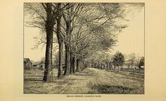 This is what University Avenue in Tuscaloosa, Alabama looked like in 1887. Broad Street was later named University Avenue