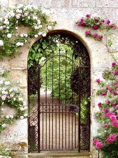 a lovely garden entrance . wrought iron gate, climbing roses and arched doorway; So pretty! Garden Entrance, Garden Arbor, Garden Doors, Entrance Gates, Garden Fences, Unique Garden, Garden Modern, Modern Backyard, Large Backyard