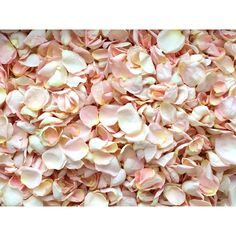 Freeze Dried Rose Petals, Blush, 10 cups of REAL rose petals,... ❤ liked on Polyvore featuring home, home decor, floral decor, flower home decor, blush home decor, flower stem, rose home decor and blush home accessories