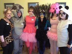 Zoo costumes