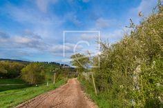 Roter Weg in grüner Landschaft - auf http://ronni-shop.fineartprint.de