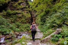 ÖSTERREICH / WASSERFÄLLE / Raggaschlucht: wandern im Naturdenkmal Bradley Mountain, Mountains, Nature, Travel, Waterfall, Road Trip Destinations, Photo Illustration, Projects, Naturaleza
