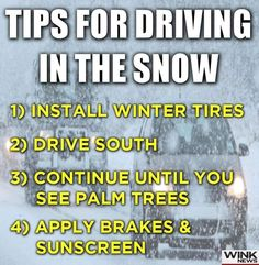 Kids Cereal, Winter Tyres, Ice Storm, Its Cold Outside, Sunscreen, Palm Trees, Cool Pictures, How To Apply, Snow
