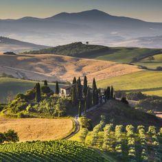 Weinberge soweit das Auge reicht - die idyllische Landschaft der Toskana ist unvergleichbar. Erhole dich inmitten der malerischen Natur und …
