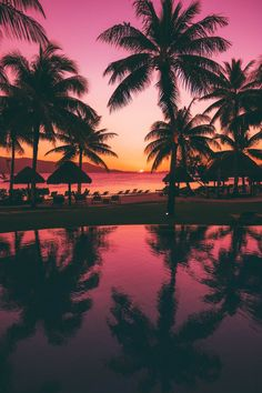 French Polynesia Holidays: The Ultimate Guide To Planning the best trip to Bora Bora, Tahiti, and the Society Islands. When planning your French Polynesia holidays and looking for a breakdown of prices, look no further - I break down every price. Trip To Bora Bora, Bora Bora Island, Bora Bora Honeymoon, Mexico Honeymoon, Sky Aesthetic, Travel Aesthetic, Sunset Pictures, Nature Pictures, Dream Pictures