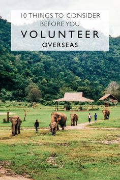 Volunteering and voluntourism have become huge parts of the travel industry. These are the things to consider before you volunteer overseas. Teen Volunteer, Volunteer Overseas, Volunteer Programs, Volunteer Work, Moving Overseas, Overseas Education, Work Abroad, Study Abroad, Ways To Travel
