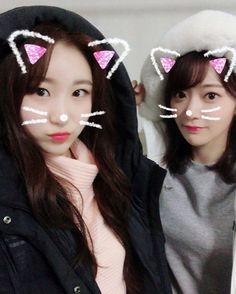 Kpop Girl Groups, Kpop Girls, Sakura Miyawaki, Wattpad, Japanese Girl Group, Kim Min, The Wiz, Yuri, Color