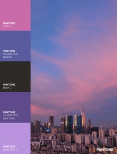 Palettes / Color : No. 24 Pantone Violet, Pantone Black, Desktop Screenshot, Palette, Color, Colour, Pallet, Pallets, Colors