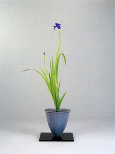 Ikebana art