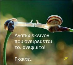 Words Quotes, Sayings, Greek Quotes, Beautiful Mind, Looking Back, Poetry, Dreams, Motorbikes, Greek