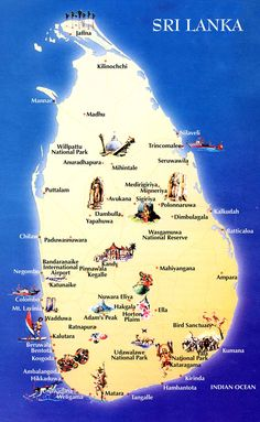 12 Best Honeymoon Images Sri Lanka Sri Lanka Holidays Sri