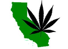 """Here's something you can file under """"you don't say"""": Pot Use Is """"Double"""" in States Where Medical Marijuana Is Legal"""