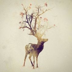 Smoky Double Exposure Animals Illustrations – Fubiz Media