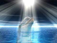 Dolphins are the Angels of the sea who help us clean and purify our soul, body and spirit! Love & light, Journey Angels