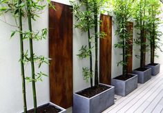 Bamboo - Modern Fence/Wall
