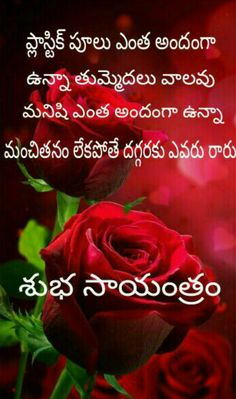 Morning Girl, Good Morning All, Good Morning Quotes, Evening Quotes, People Quotes, Good Advice, Telugu, Cool Words, Quotations