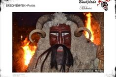 Home Used Tires, Busan, Techno, Halloween, Hungary, Animals, Diy And Crafts, Pictures, Animales